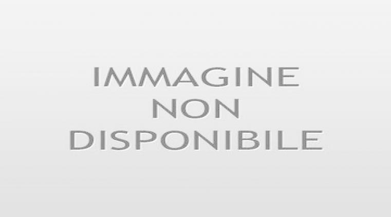 Libro Anno 2020